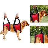 Filfeel Cablaggio per cani, Pet Walking Aid Lifting Pulling Vest Sling Support Riabilitazione per cani anziani e feriti(Rear