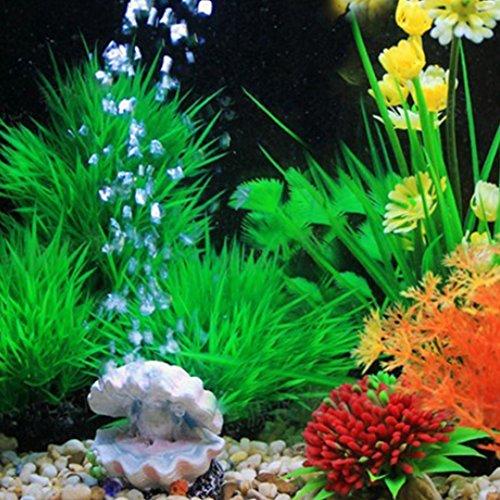 Zoom IMG-2 runfon corallo per acquario pianta