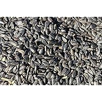 Graines de tournesol noires 25kg