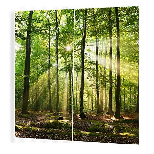 EdBerk74 luz solar 150 * 166 Cortina Floral Flores Impresión Cortinas de la Ventana Decoración para EL hogar Dormitorio Sala de Estar-Color