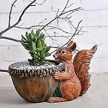 Nozdom Maceta de resina con forma de ardilla para decoración de mesa, hierbas, flores, oficina y hogar