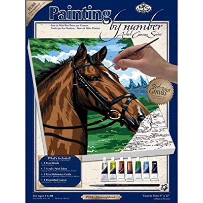 Royal & Langnickel Painting by Numbers Artist Canvas Series Thoroughbred Small Designed Painting Set - inexpensive UK light store.