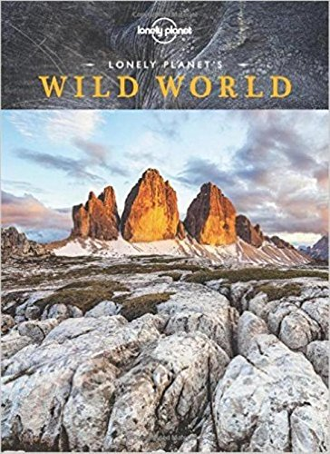 Wild World - 1ed - Anglais