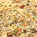 Tidymix Premium Quality Parrot Diet Seed Blend by Tidymix