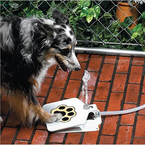 Meiying Durable Outdoor Doggie Water Fountain Step-on Fresh Cold Drinking Water (Open-back-teddy)