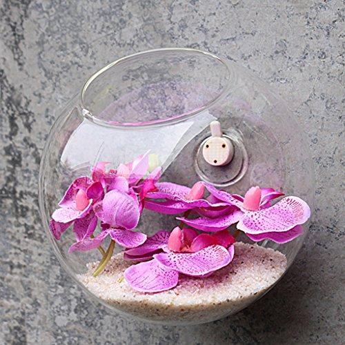 Jarrones de Pared Colgante Florero de Cristal Botella para Decoraciones Flores Plantas