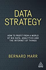 Data Strategy: How to Profit from a World of Big Data, Analytics and the Internet of Things Paperback