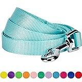 Blueberry Pet 1,5 cm by 150 cm Klassisch Einfarbige Kleine Basic Nylon-Hundeleinen Langlebig - Minze Blau, S Kleine Hundeleine, Passender Hundehalsband & Hundegeschirr erhältlich separate