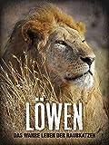 Löwen - Das wahre Leben der Raubkatzen