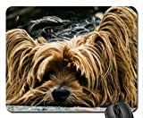 bad hair day Mouse Pad, Mousepad (Dogs Mouse Pad) - Best Reviews Guide