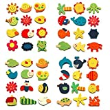 CraftDev Wooden Nature Theme Magnets - Set of 48, Multicolour