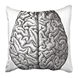 jinhua19 kissenbezüge Print White Anatomy Human Brain Vintage from Meyers Konversations Lexikon 1897 Black Medical Old Antique 18 X 18 Inch Square Zipper Polyester Home Sofa Decorative Case