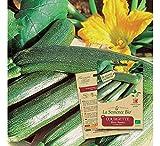 Semence biologique de légumes : courgette longue black beauty