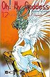 Oh! My Goddess 12: Keiichi und die Frauen