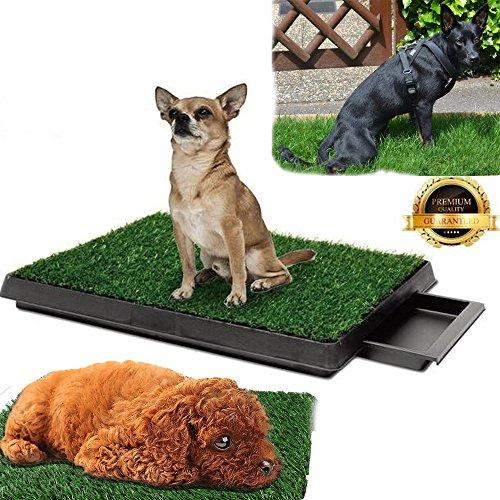 Qulista Hundetoilette Balkon/Garten/zu Hause mit Rasen, Puppy Trainer Kunstgras Hundeklo Welpentoilette 63 x 50cm