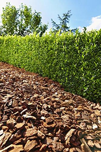 Floragard Mulch Pinienrinde 15-25 mm 60 L, mittel -