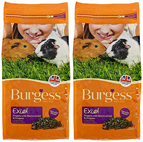 Burgess Excel Guinea Pig Nuggets with Mint, 10kg 2
