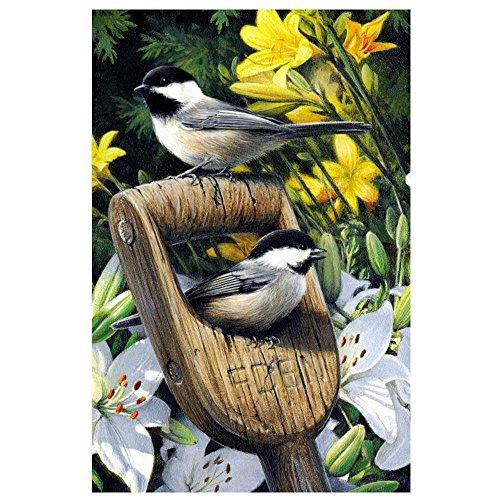 Tree-Free Greetings ECOnotes FS66819 Blanko-Notizkarten, passende Umschläge, blanko, 10 x 15 cm, Eden Birds, 12 Stück