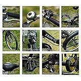 ZNL FANO-TEC Dreirad Für Erwachsene Lastenfah...Vergleich