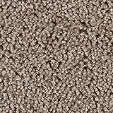 BODENMEISTER BM72375 Teppichboden Auslegware Meterware Hochflor Shaggy Langflor Velour beige braun 400 und 500 cm breit, Verschiedene Längen, Variante, 4 x 5 m