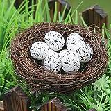 SamMoSon Uova di Uccello di Schiuma Mini Uovo di quaglia Artificiale Modello di Nido d'uccello Creativo Decorazioni di Pasqua Simulazione di Pasqua Nido di Uova di Struzzo