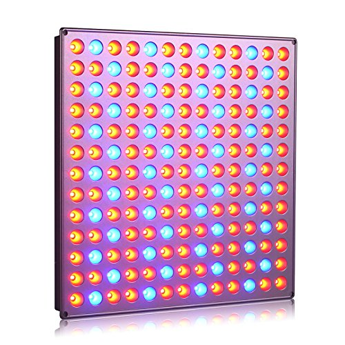 Roleadro 45W Led Grow Light 169 Leds with Red Blue Light for Indoor Plant Growing Hydronics Vegetable and Flower in Grow Box and Grow Tent?276mm*276mm*14mm?