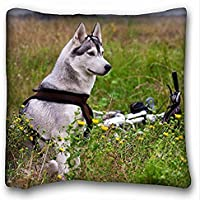 Decorative Square throw Pillow case Animals Field Bicycle Malamute Flowers 18in x 18in due parti