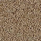 BODENMEISTER BM72375 Teppichboden Auslegware Meterware Hochflor Shaggy Langflor Velour beige 400 und 500 cm breit, Verschiedene Längen, Variante, 6 x 5 m