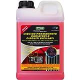 Cora 0023 Liquido Radiatori Auto, -35°C, Rosso