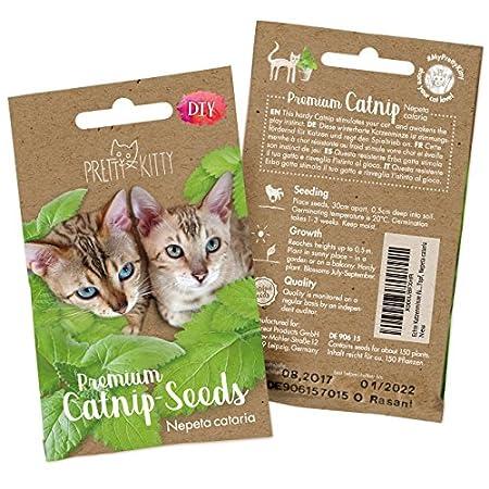 PRETTY KITTY Samen für Katzen Premium Katzenminze