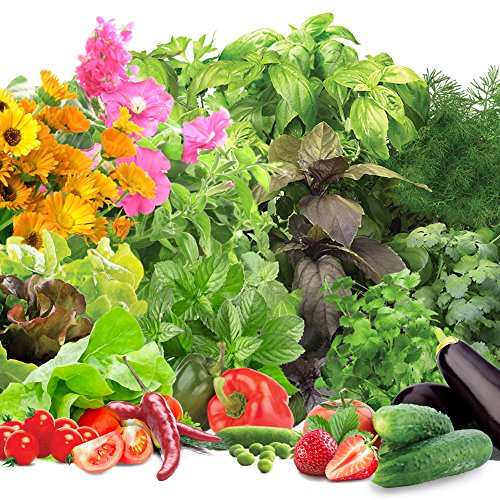 miracle-gro-aerogarden-kit-di-capsule-per-coltivazione-di-semi-vari-grow-anything-6-capsule