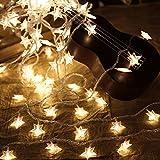 Pingxia 6m 40 LEDs Stern Led Lichterketten, Warmes Weißes Batteriebetrieben Kupferdraht Fee-Schnur Beleuchtet Lichterkette Dekorative Seil Lichter für Weihnachtsfeier Hochzeit Garten Festival
