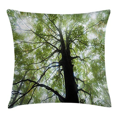 Nature Throw Pillow Cushion Cover by, Moody Photo of Old Forest Tree in a Foggy Misty Weather Botanical Eco Picture, Decorative Square Accent Pillow Case, 18 X 18 Inches, Green Brown White (Moody Blues Halloween)
