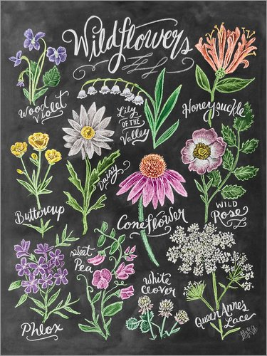 Holzbild 60 x 80 cm: Wildblumen in Kreide von Lily & Val / MGL Licensing