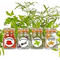 50 étiquettes en plastique lavable pour les épices en pot. Images captivantes et colorées de 50 herbes et épices.