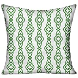 ziHeadwear Velvet Throw Pillow Cases,Green Line Geometric,Pillow Covers Decorative Pillowcase Cushion Covers with Zipper 18x18 Inches