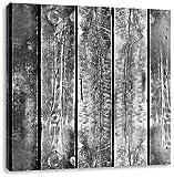 Monocrome, Bunte Zaunslatten, Format: 70x70 auf Leinwand, XXL riesige Bilder fertig gerahmt mit Keilrahmen, Kunstdruck auf Wandbild mit Rahmen, günstiger als Gemälde oder Ölbild, kein Poster oder Plakat