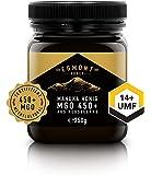 Manuka-Honig 450+ MGO original aus Neuseeland (250 g) UMF 14+ - 100% rein, zertifiziert, natürlich antibakteriell, aktiver Manuka-Honey | Egmont Honey