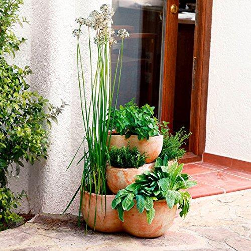 Terracotta-Etagen-Pflanztopf