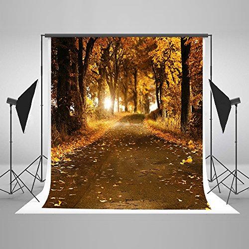KateHome PHOTOSTUDIOS 1.5x2.2M Fotografie Hintergrund Herbst Herbstblätter Hintergrund Sun Yellow Grove für Kinder Foto Studio Cotton Keine Nahtlose Wiederverwendung Kulissen