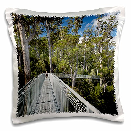 danita-delimont-paths-airwalk-paths-tahune-forest-tasmania-australia-au01-dwa3861-david-wall-16x16-i