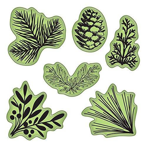 Unbekannt Stamping Gear 4x 4-Zoll-Inka-Tannenzapfen Evergreen selbst Stempel -