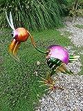 Uccello Tucano Decorativa in Metallo, Altezza 50cm, finemente lavorati Uccello del paradiso decorazione da giardino in metallo figura