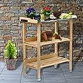 Holz Pflanztisch 76x38x91 cm für Garten Terasse Balkon mit Zinkplatte Gartentisch 2 Ablagen Wetterfest Pflanzregal von RM Holding - Du und dein Garten