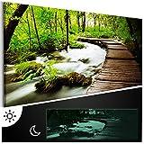 murando - Leinwand Bilder nachtleuchtend 120x40 cm - Tag & Nacht Wandbilder - Premium - Bilder 3D nachleuchtende Farben - Kunstdruck - Vlies Leinwand XXL - Fertig Aufgespannt - Wald grün Baum Natur Landschaft c-B-0161-ag-a