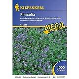Phacelia -1 kg Gründünger Mega-Pack -