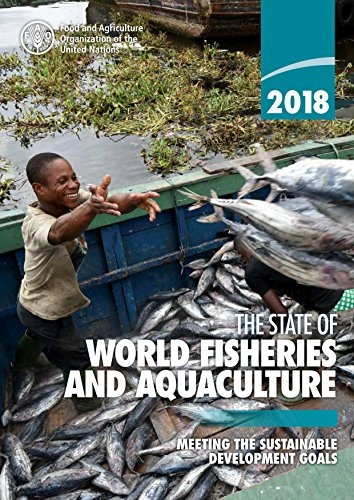 worlds fish supply running out essay An international group of ecologists and economists warned yesterday that the world will run out of seafood by 2048 if steep declines in marine species continue at current rates, based on a four-year study of catch data and the effects of fisheries collapses.