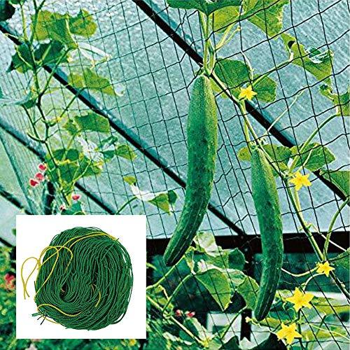 AnkamalElec Premium Ranknetz 7 Sizes mit großer Maschenweite Kletterpflanzen für Garten Besonders Ertragreiche Ernte von Gurken, Tomaten und Anderen Gemüsepflanzen Rankhilfen (1.8 * 3.6m)