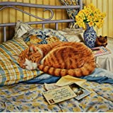 Flora, the Ginger Cat asleep on the Bed, Greeting Card by Geoff Tristram, Greetings Card Size Approx. 140 x 140mm