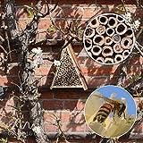 Gardigo Bienenhotel, Bienen-Insektenhotel, Bienenhaus zum Nisten und Überwintern - 3